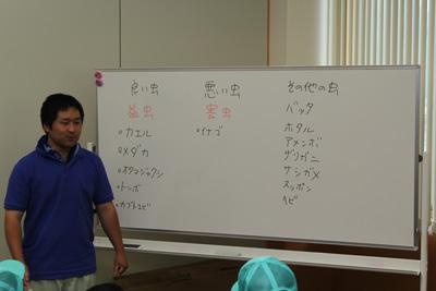 140622hirotani-mushi.jpg
