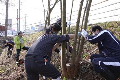 130309izusiseisou-1.jpg